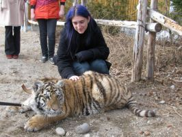 Me, myself and ... tiger? oO by Snyki