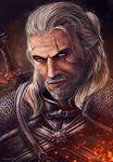 The Witcher by AnsticeWolf