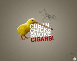 Cuban chick by goergen