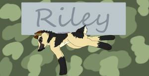 Riley ..:GIFT:.. by Noragamiii