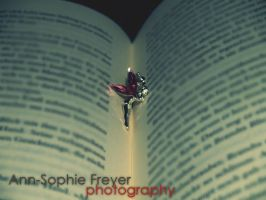 Fairy on the book by Annso94