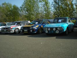 Great Rally Cars by franco-roccia