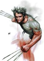 dear wolvie by Firnadi