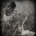 .elegy for a lost summer. by life-number-9