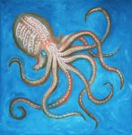 Octopus by 1996ds
