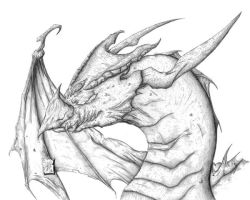 Dragon Head by thetoothless1