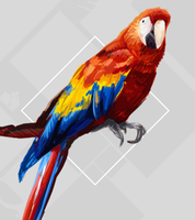 scribbly parrot by Pixelated1
