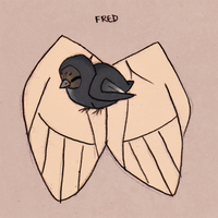 Fred by nanda16