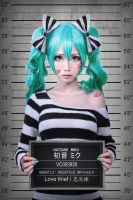 Server Your Time  Miku Cosplay by MonCosplay