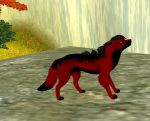 My Wolf For Blood Wolves Application by FrozenCupcake907