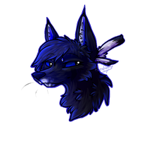 Roleplay Character | Wynn the Wolf by FussyFeline