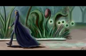 Snape and will-o'-the-wisps by Natalliel