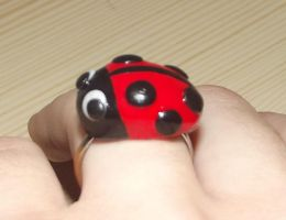 Ladybird ring 2 by MeticulousBlue