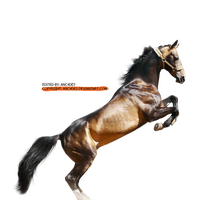 Render - Horse by ANC4DES