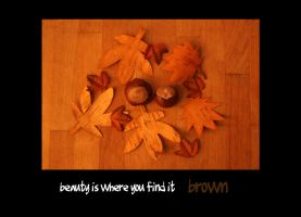 beauty is where you find it: brown by MadameMimii