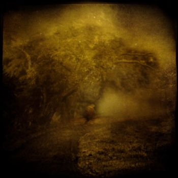 Forgotten Way by intao