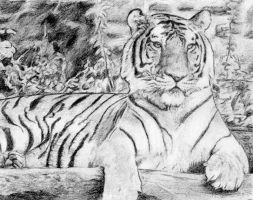 Laying Tiger by cloudybrain