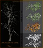 EXCLUSIVE STOCK PNG tree by MaureenOlder