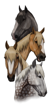 Amazing Mares - For Doppina by celinaclraw