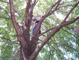 Me in a tree by WrenShimmamora