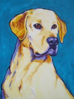 Yellow lab on Teal by samtaylor5