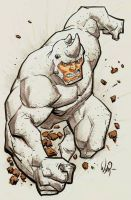Rhino by RyanOttley