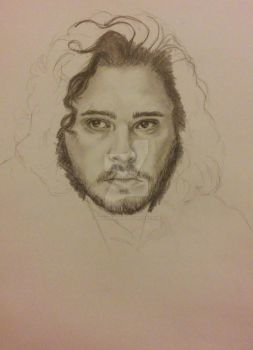 King of the North in process by AnnyMedicine