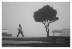 The Mist IX by NunoCanha