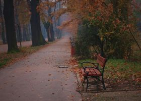 Bench by PaperMarionett