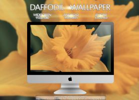 Daffodil Wallpaper Multi Pack by Eternal-Polaroid