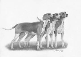 Hounds by Captured-In-Pencil