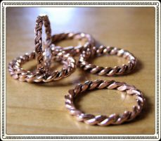 Copper Bands by thomasj7676