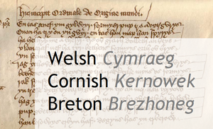 Comparing Welsh, Cornish and Breton by sewandrere
