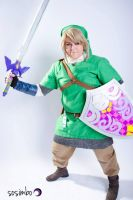 SaltFest 2013 - Skyward Sword Link by sugarpoultry
