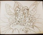 Fairy Fellowship by raelyn-earfalas