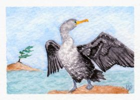 ATC Cormorant on a windy day by Pagan-Inspiration