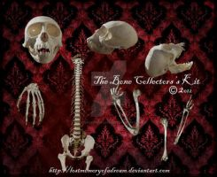 The Bone Collector's Kit by LostMemoryOfADream