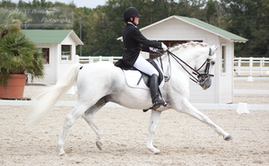 Dressage Cup_141 by CalyHoney