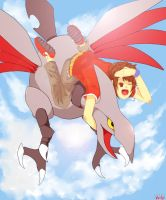 Riding a Skarmory by Moefactor