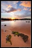 Salt Pond I by aFeinPhoto-com