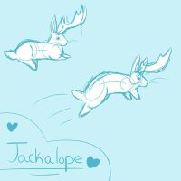 Jackalopes by PandiBrandi