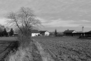 Country somewhere in central Poland by Mateusz78
