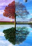 The tree of four seasons by montelsg