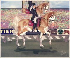 .:AUSe-Olympics - Beautiful:. by BlueMoonStables