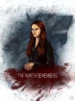 The North Remembers by yurixmeister