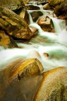 Little Cottonwood River by clinekurt78