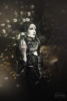 Dark flower ..  gothic  WGT by S-T-A-R-gazer
