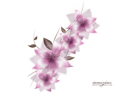 Vector png flower by iamszissz
