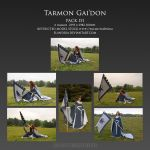Pack 151 Tarmon Gai'don by Elandria