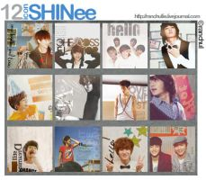 Icon 06 - Shining Shinee 2 by Byakushirie